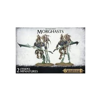 Age of Sigmar : Deathlords - Morghasts