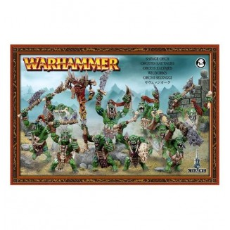 Age of Sigmar : Destruction - Savage Orcs