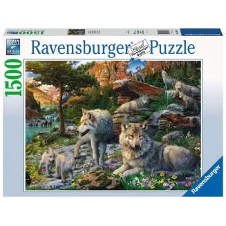 Puzzle 1500 p - Loups au...
