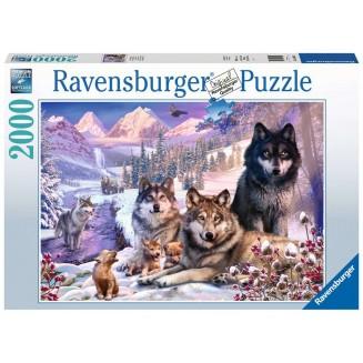 Puzzle 2000 p - Loups dans...